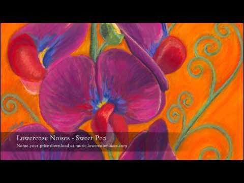 Lowercase Noises - Sweet Pea