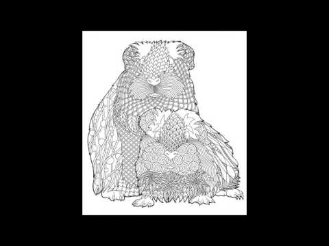 Doodle Artist - Guinea Pigs: A colouring book for grown ups - YouTube