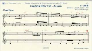 283 - Cantata BWV156 - Arioso - J.S.Bach - (Flugelhorn)