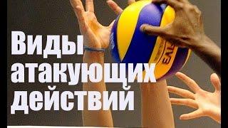 Волейбол. Виды атакующих действий/Basic types for Volleyball Spikes