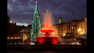Christmas at Trafalgar Square