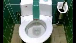 Toilet in Germany