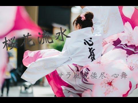 「桜華流水」 バサラ風流倭尽 心舞 2019 バサラ祭り
