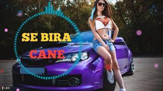 SE BIRA - CANE #new Resimi