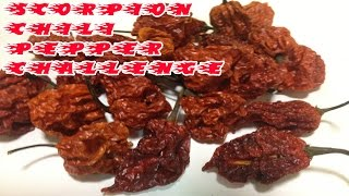 The Scorpion Chili Pepper Challenge!!!!!!