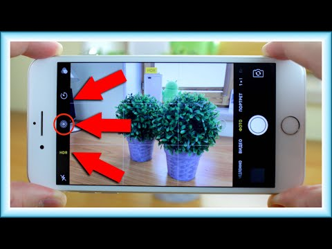 Вопрос: Как пользоваться камерой в iPhone?