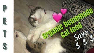 ORGANIC PET FOOD???  Make your own saved $$$ My Healthier cats