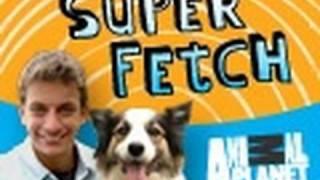 Superfetch: Dog Fetches Diaper