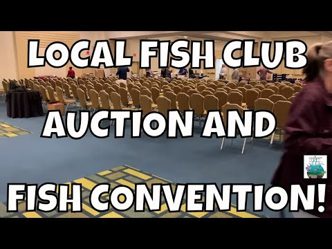 Local Fish Club Auction And Tropical Fish Convention!