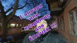 1 января 2020 Новый год ЁЛКИ по городу мчатся   Вырубка леса в Украине   Одесса онлайн прямом эфире