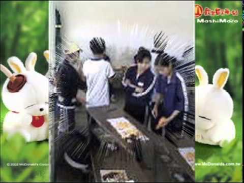12a1 le thi pha bao loc lam dong
