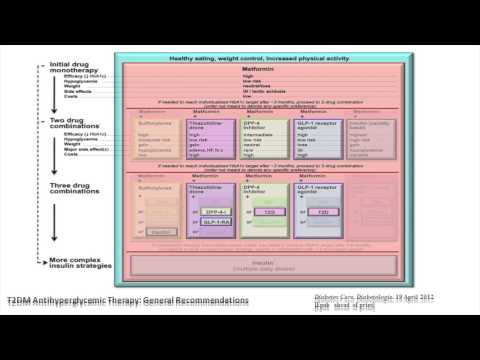 Part 1 -Treatment of Type 2 Diabetes in the New Onset Patient