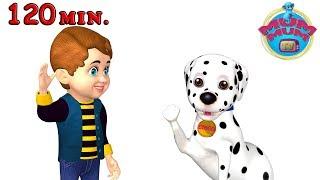 Bingo Dog Song | Bingo Was His Name O - Best Nursery Rhymes Songs for Children | Mum Mum TV
