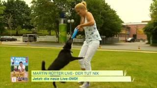 Martin Rütter - Der tut nix! - Jetzt auf DVD!
