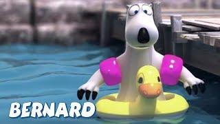 Download Bernard Bear | Sailing AND MORE | Cartoons for Children