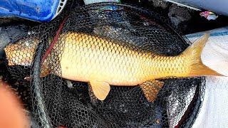 с таким ЗАКОНОМ для РЫБАЛКИ ВЫ СОГЛАСНЫ Рыбалка с ночёвкой весной 2021