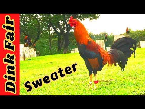 Dink Fair Sweater