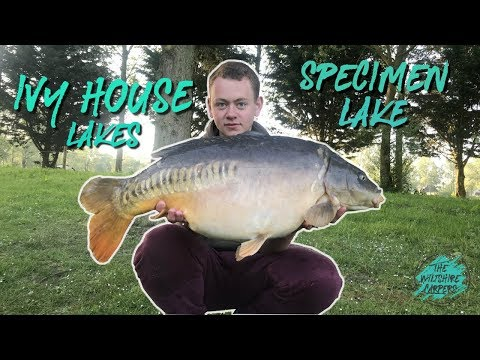 **CARP FISHING** IVY HOUSE LAKES L THE CODE TO CARPING EP.2