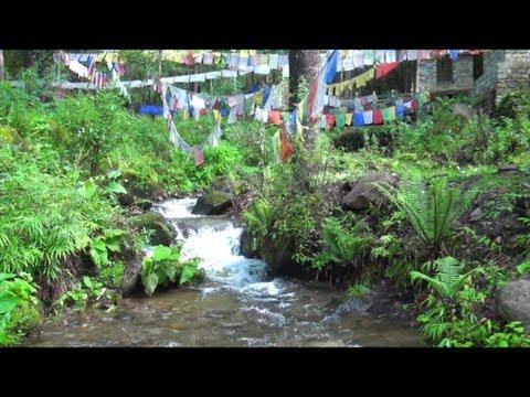 Public Environmental Expenditure Review in Bhutan