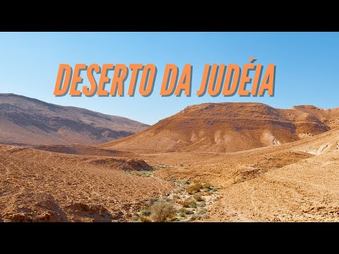 Crop circle - Desert of Judea in Israel