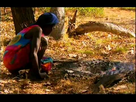 Ray Mears' Wild Food Episode 1