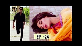 Qurban Episode 24 - Top Pakistani Drama