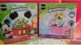 Miracle Gro Kids Disney Greenhouse Kits Hands On Review + Giveaway