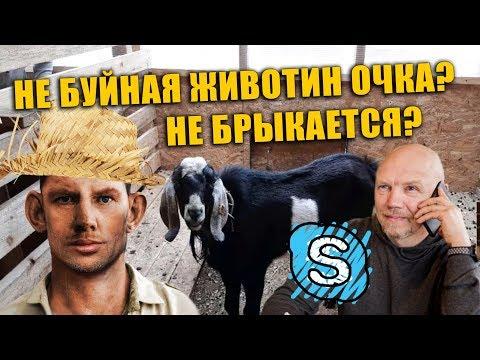 Глад Валакас Покупает Козлика, Кожанку и Туфли на Авито