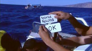 Лестница в бездну. Мировой рекорд погружения.(Документальный фильм о мировом рекорде погружения на глубину 318,25 метров, совершенном Нуно Гомесом 10 июня..., 2015-01-30T15:45:08.000Z)