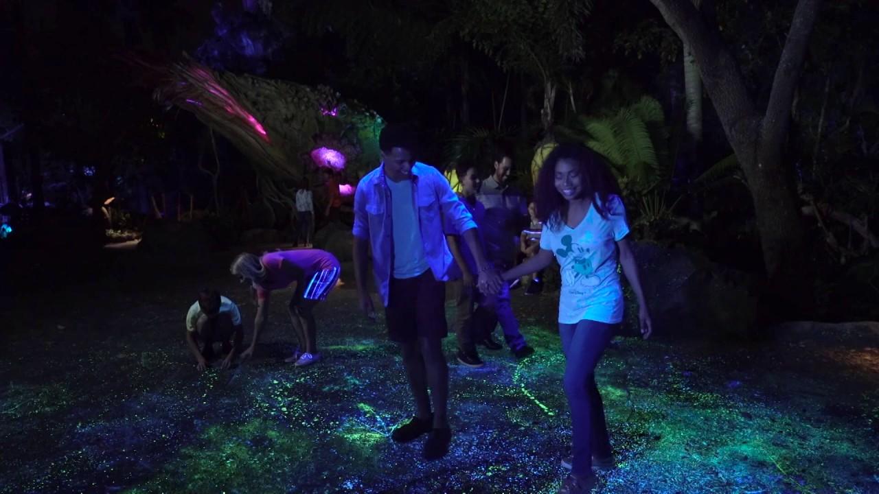 Nighttime Bioluminescense Preview