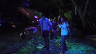 Nighttime Bioluminescense Preview - Pandora: The World of AVATAR at Disney