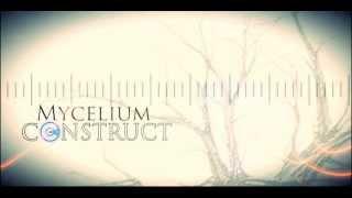 Mycelium Construct - Intro (Untitled)
