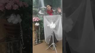 PROFETA LARISSA DE LEÓN..APRENDE A DISCERNIR