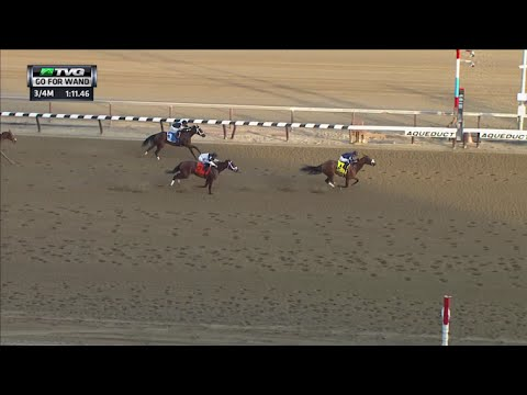 RACE REPLAY: 2015 Go For Wand Handicap