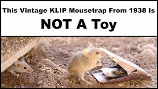 The Vintage KLIP Mousetrap From 1938 Is Not A Toy. Mousetrap Monday