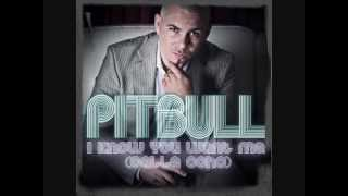 Pitbull I know you want me (calle ocho)  Mp3 + Audio