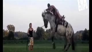 Клип про Лошадей: Я НЕ ИГРУШКА!!!!