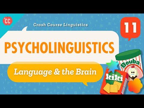 Psycholinguistics: Crash Course Linguistics #11