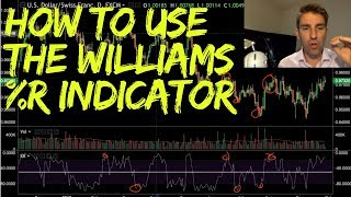 How to Use the Williams %R Indicator 📈