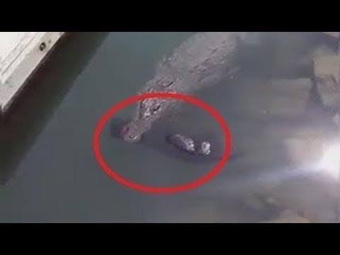 TOP 10 Impactantes Vídeos Captados Mientras Pescaban   || TOP 10 V�DEOS