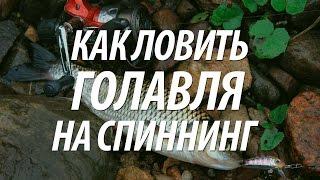 Ловля голавля на спиннинг. Рыбалка на Кубани(Рыбалка на Кубани хищной рыбы. В видео, ловля голавля на спиннинг, применяемые искусственные приманки. ..., 2015-08-13T13:48:04.000Z)