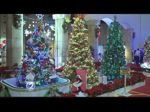City council approves return of real Christmas trees in Honolulu Hale