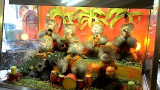 Repeat youtube video Bimbo Box   Sieben Affen machen Musik  halloherne TV   Wolfgang Quickels