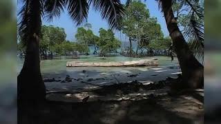 """""""Indiens vergessene Inseln"""" Teil I Die Andamanen nach dem Tsunami"""
