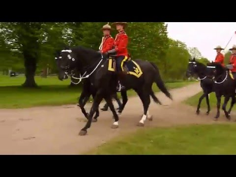 Royal Canadian Mounted Police. Windsor 2016