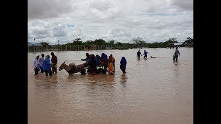 Floods in the North,over 700 acres of farmland submerged:Ktn Prime full bulletin