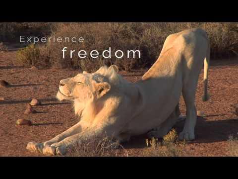 Sanbona Wildlife Reserve, near Cape Town, South Africa