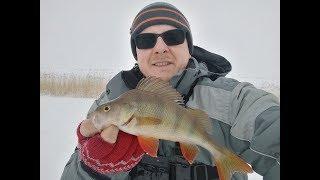ЛУЧШЕ ЧЕМ ПЕРВЫЙ ЛЕД Окунь на безмотылку Зимняя рыбалка 2019 2020