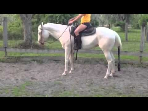 Mattie video for Brianna transitions