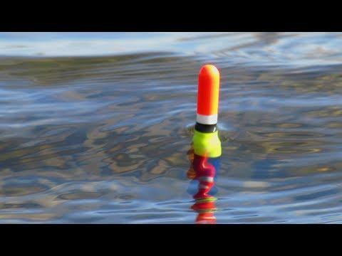 КАРАСЬ НА ХЛЕБ! УДОЧКА И ПОПЛАВОК! Рыбалка весной на поплавочную удочку